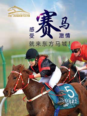 2019年中国·武汉速度赛马公开赛(5月)