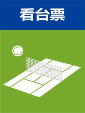 2019武汉网球公开赛(看台票)