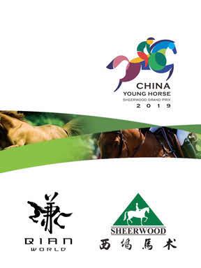第一届中国年轻马西坞大奖赛